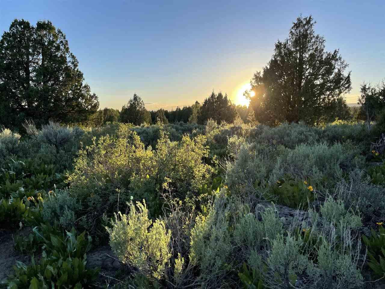 Spring Creek Ranch Sadorus Hill Property Photo