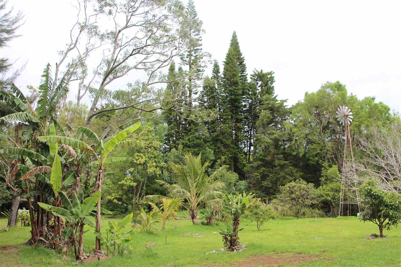 400 Waiahiwi Rd Property Photo 9