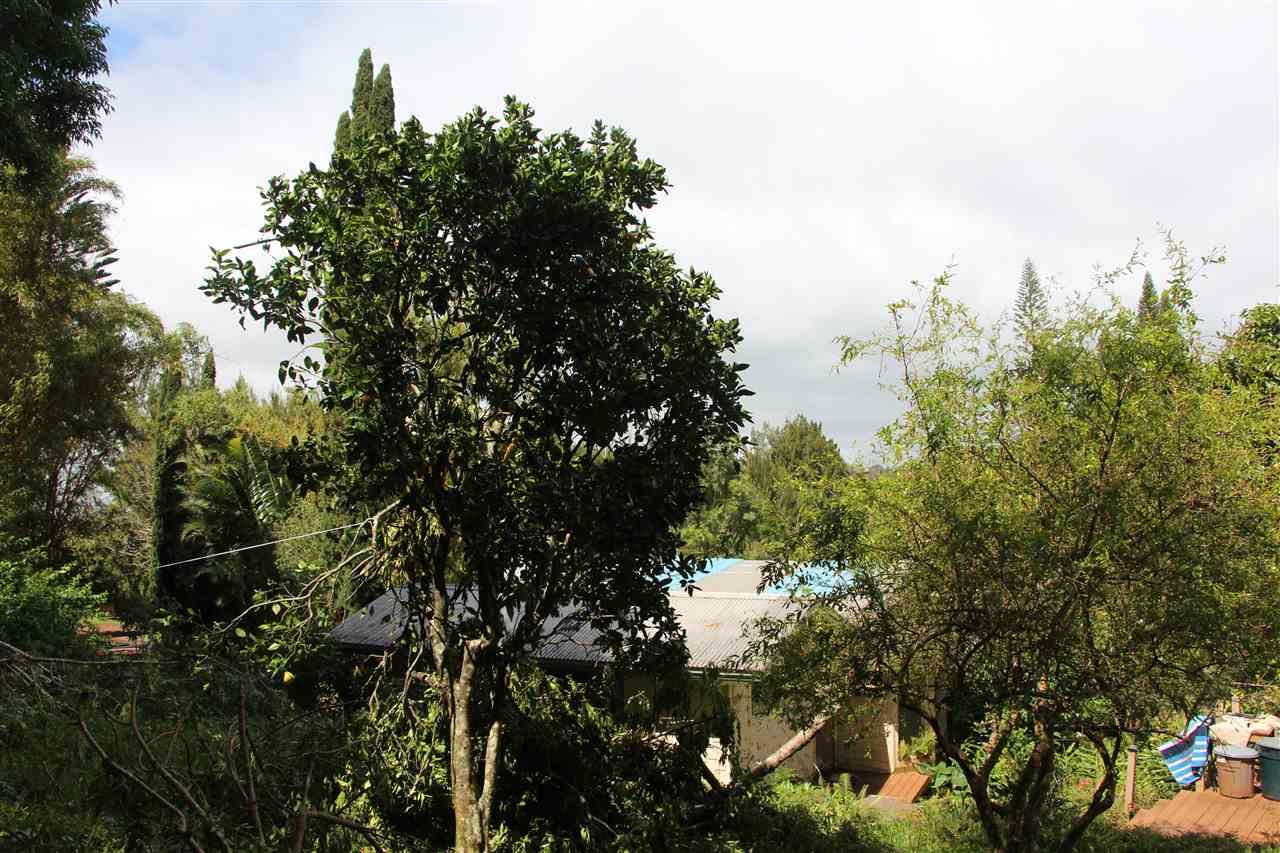400 Waiahiwi Rd Property Photo 14