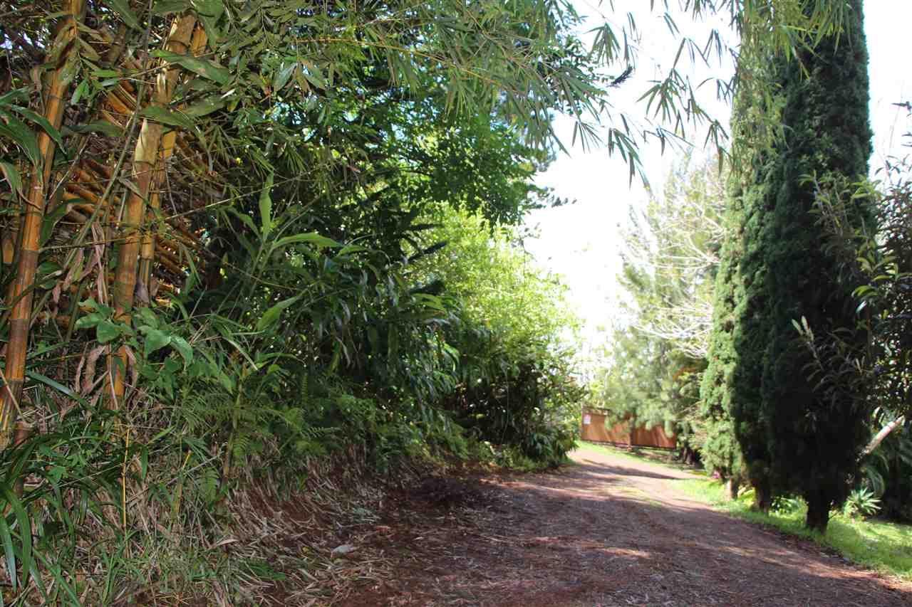 400 Waiahiwi Rd Property Photo 16
