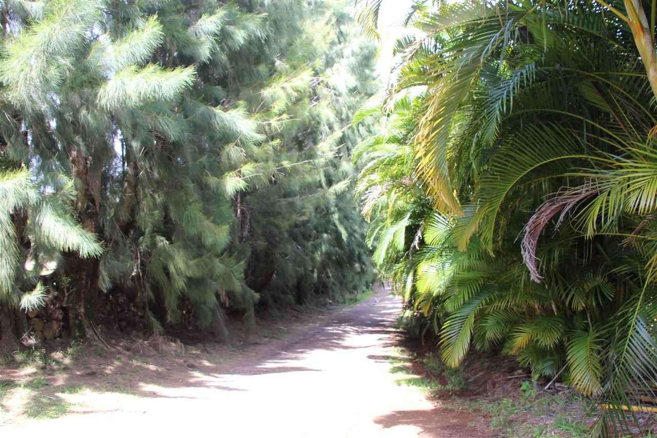 400 Waiahiwi Rd Property Photo 18