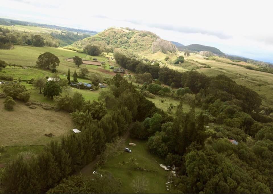 400 Waiahiwi Rd Property Photo 22