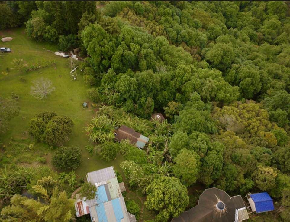 400 Waiahiwi Rd Property Photo 24