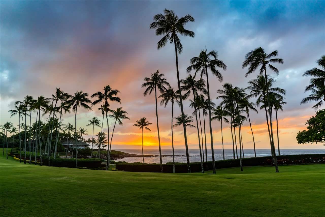 33 Coconut Grove Ln Property Photo