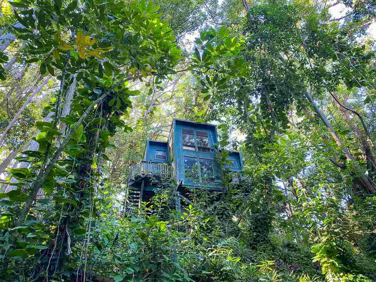 55 Lepo Pl Property Photo 18