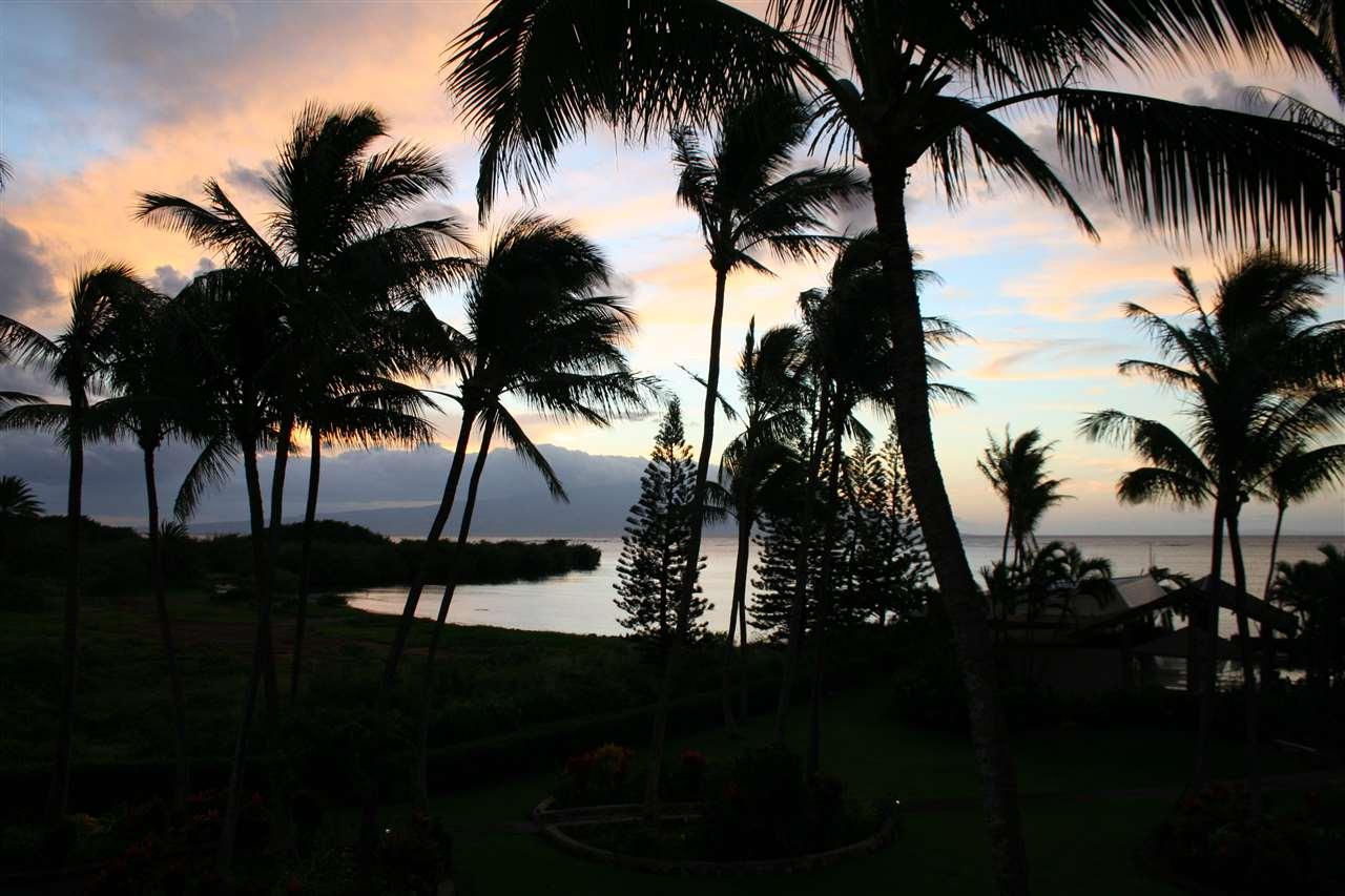 7146 Kamehameha V Hwy Property Photo