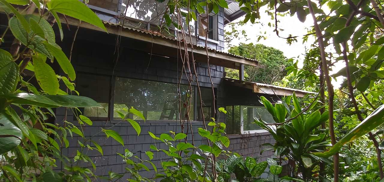400 Honokala Stream Rd Property Photo 1
