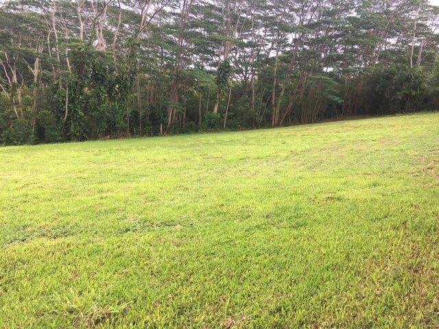 20 Waipuhia Pl Property Photo
