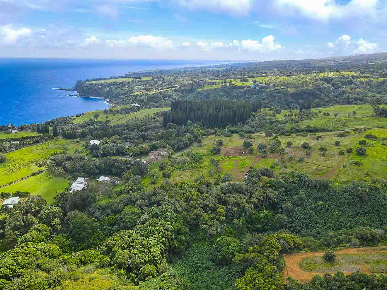 Manawai Pl Property Photo - Haiku, HI real estate listing
