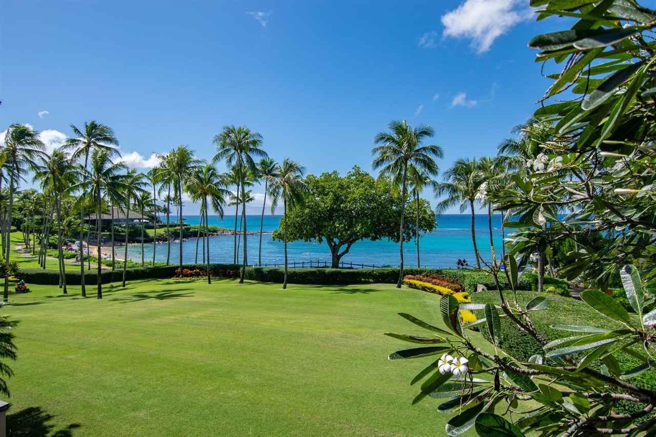 36 Coconut Grove Ln Property Photo