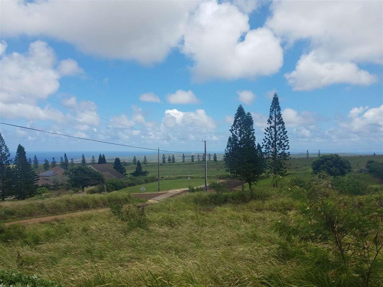 Halena St Property Photo