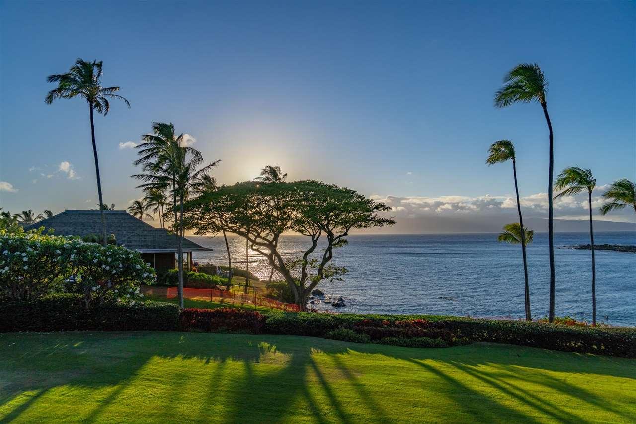 14 Coconut Grove Ln Property Photo 2