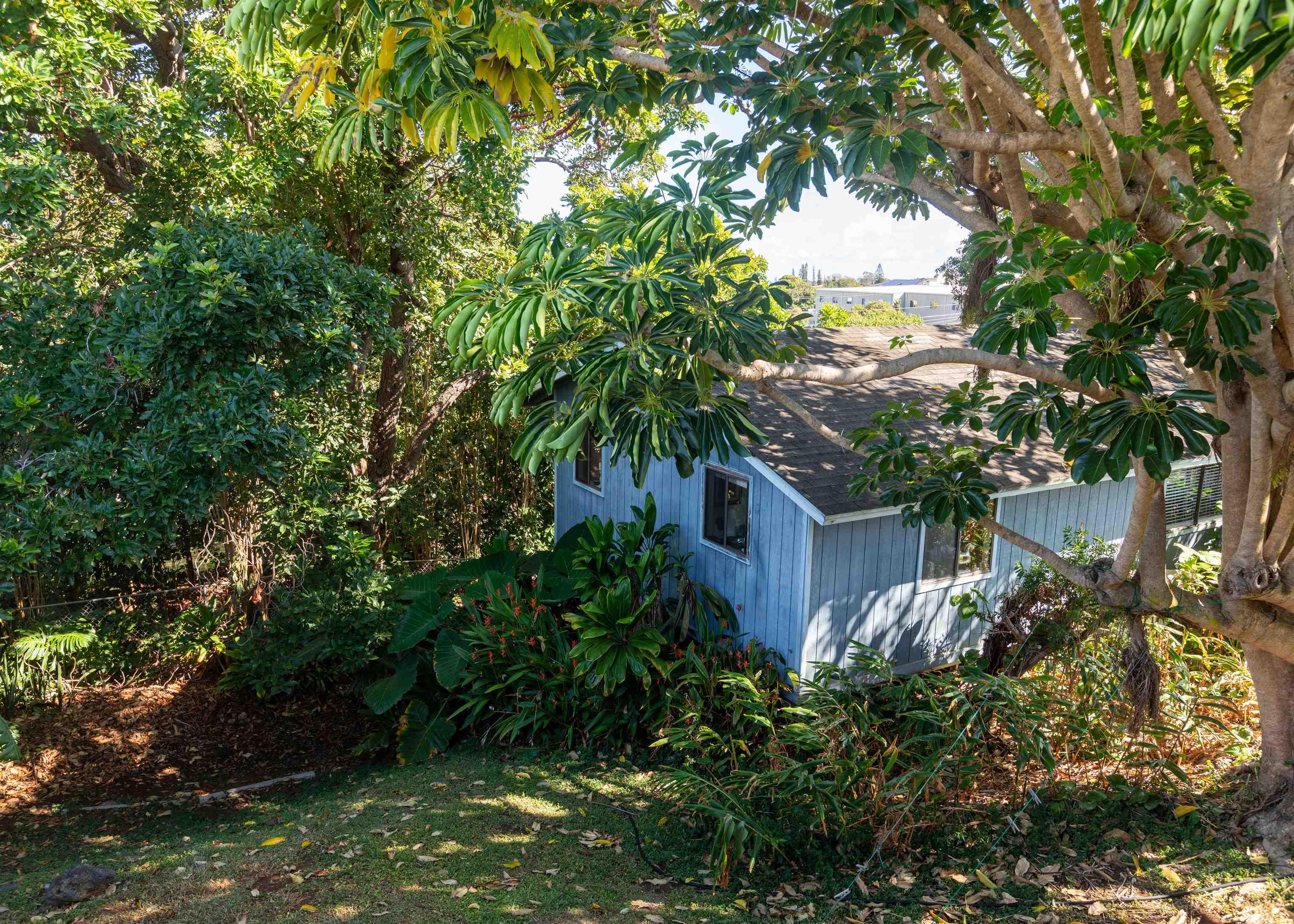 1001 Ulele St Property Photo 2