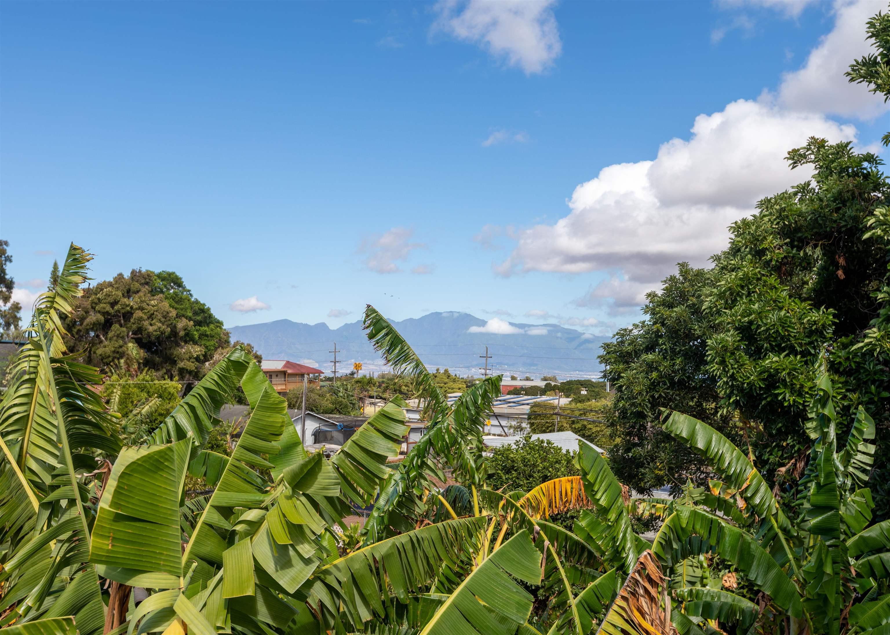 1001 Ulele St Property Photo 3