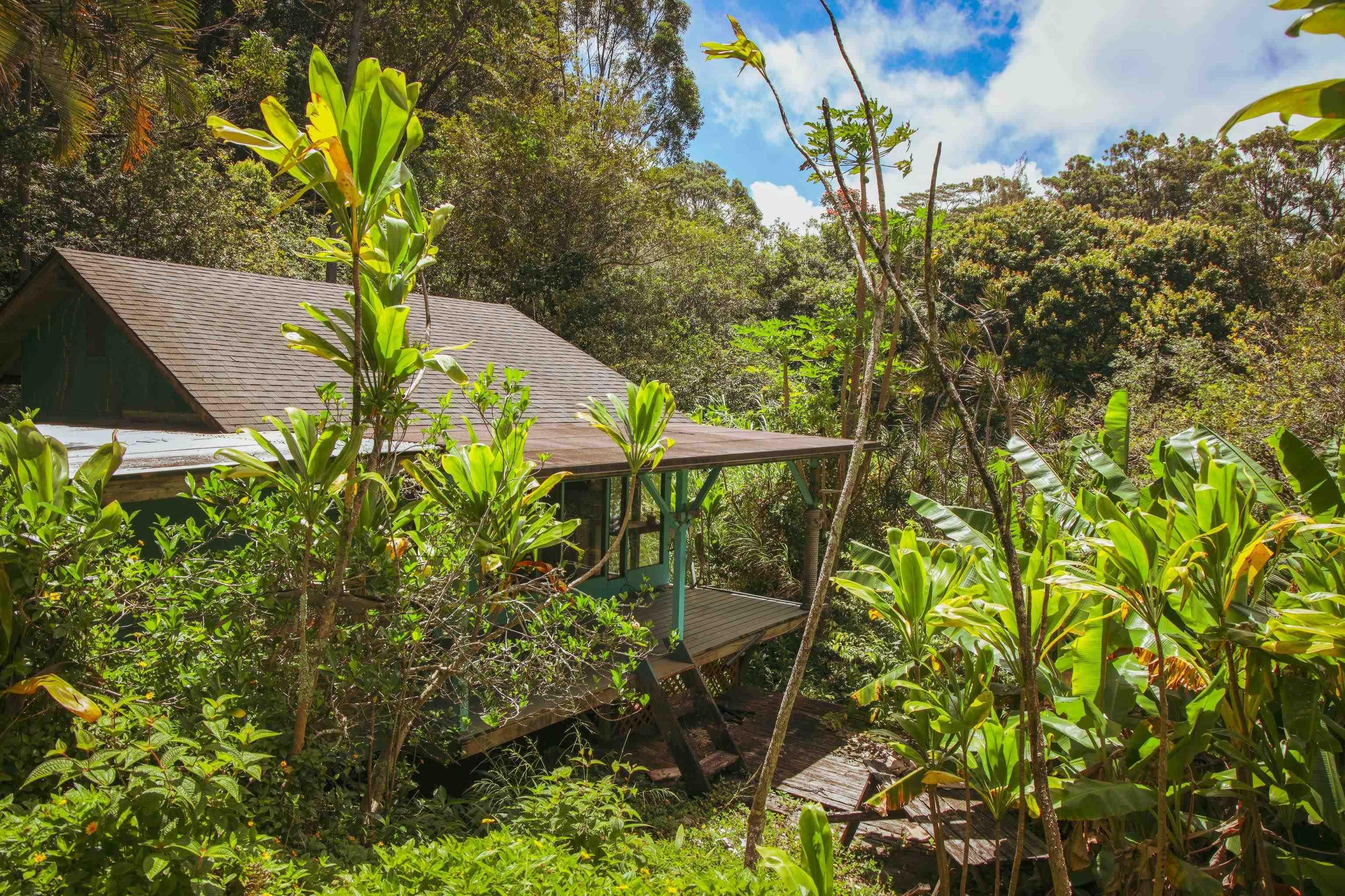 12 Mamao Pl Property Photo 29