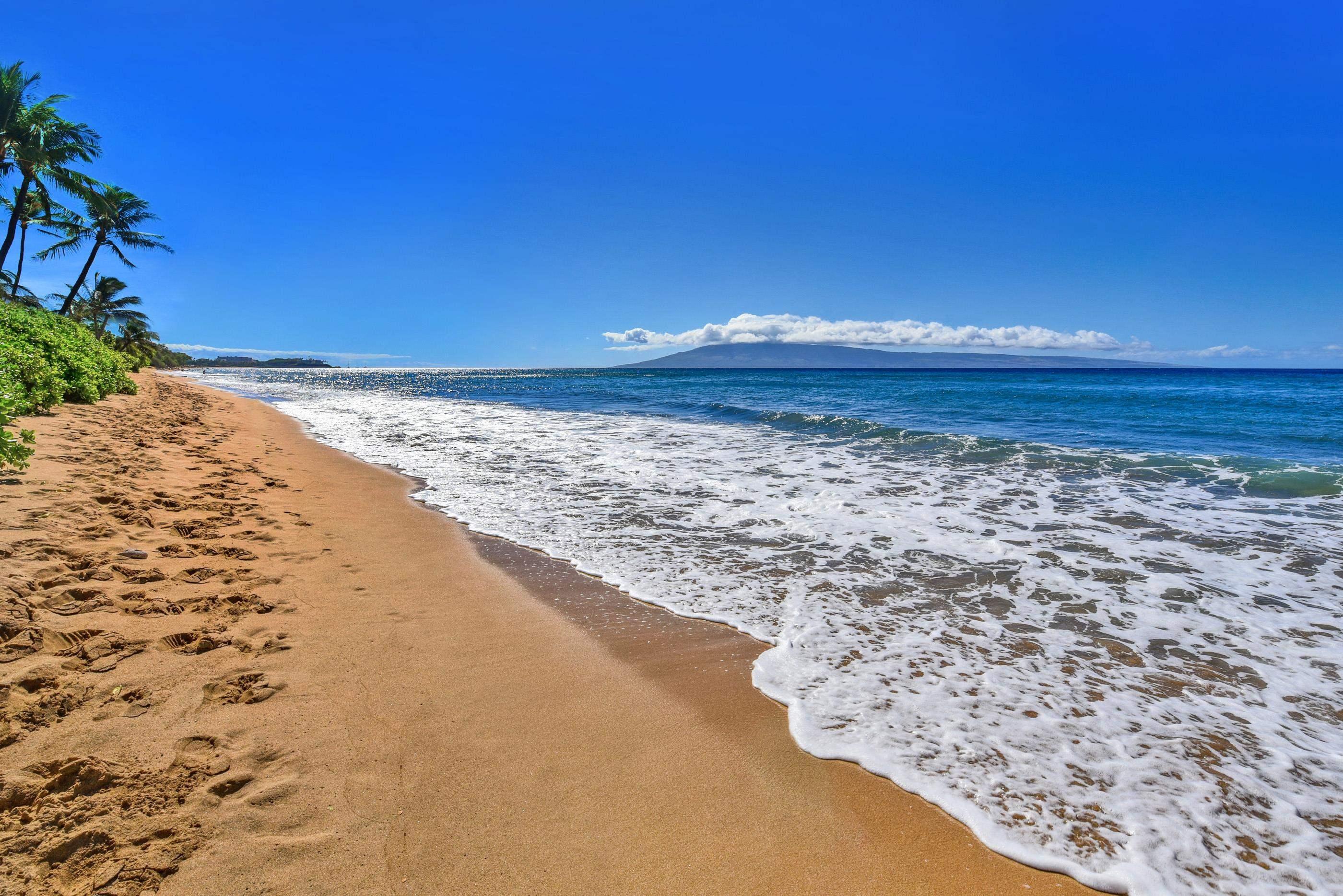 110 Kaanapali Shores Pl Property Photo 28