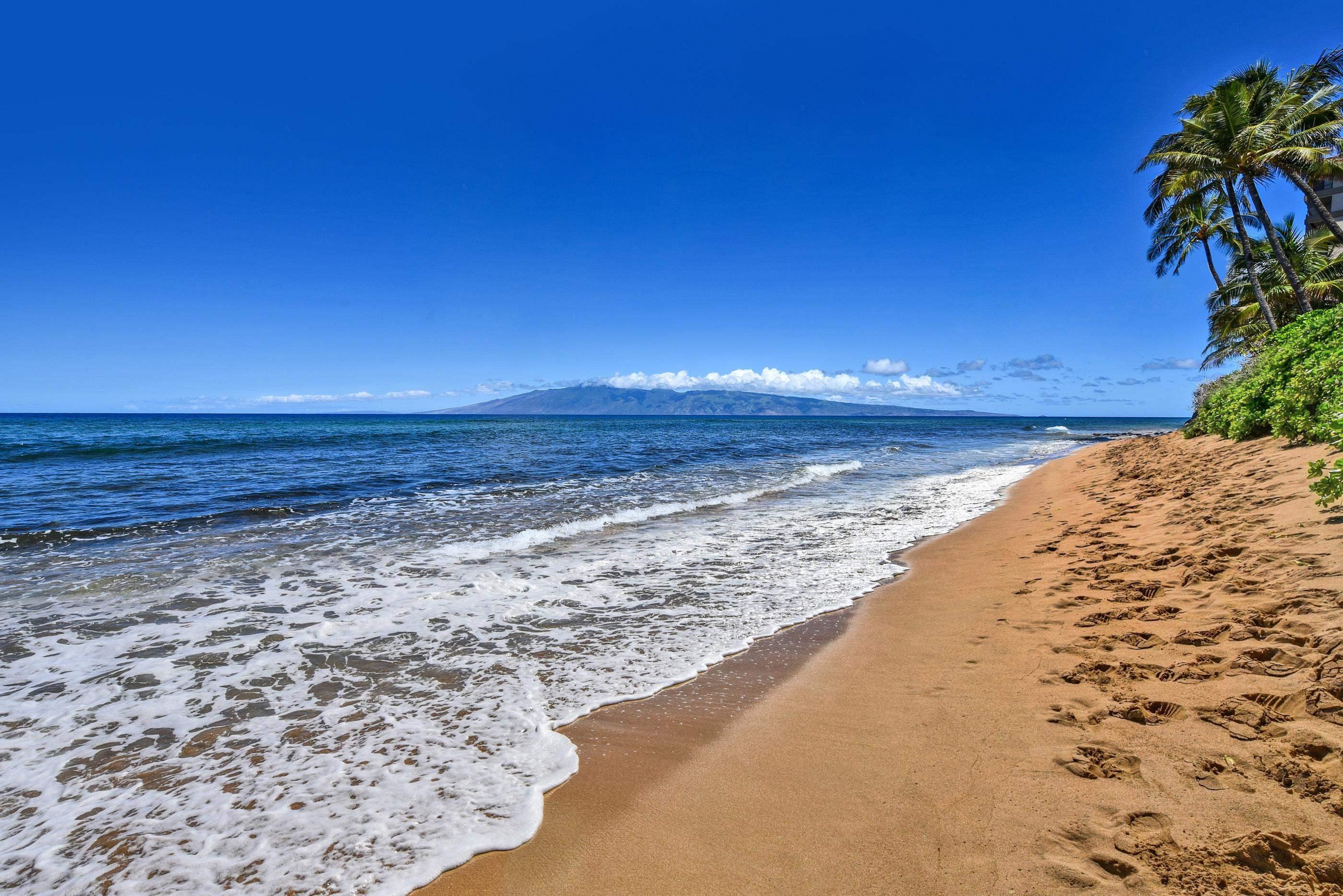 110 Kaanapali Shores Pl Property Photo 29