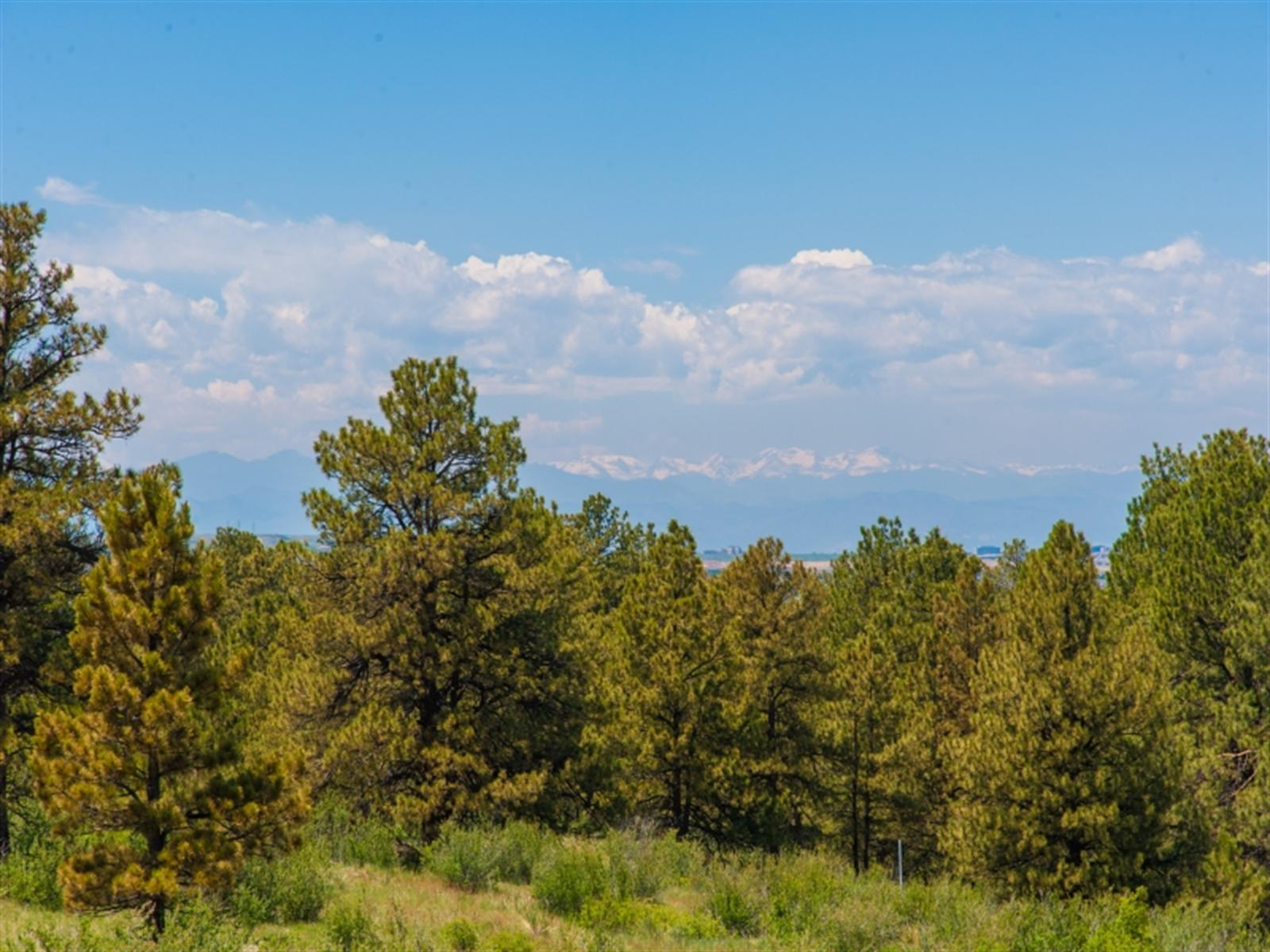 7998 FOREST KEEP Circle Property Photo - Parker, CO real estate listing