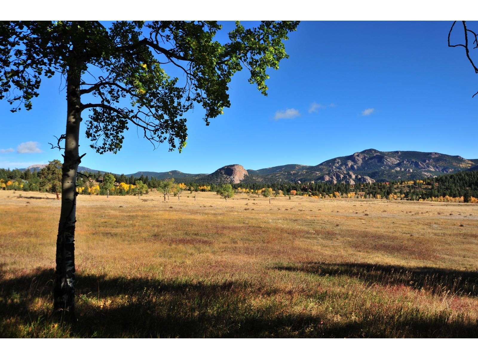 0 LOT 7 LIONS HEAD Ranch Property Photo - Pine, CO real estate listing