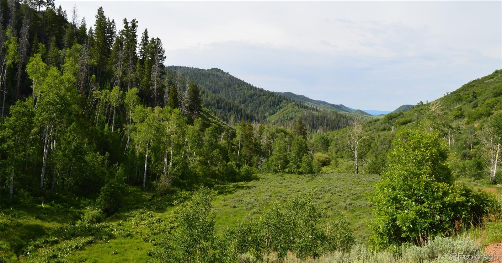 28770 County Road 64 Property Photo - Clark, CO real estate listing