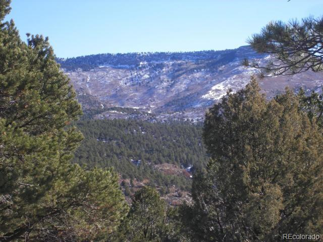36544 Tin Cup Trace Property Photo - Trinidad, CO real estate listing