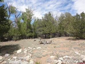 20 Cottonwood Loop Property Photo - Mosca, CO real estate listing