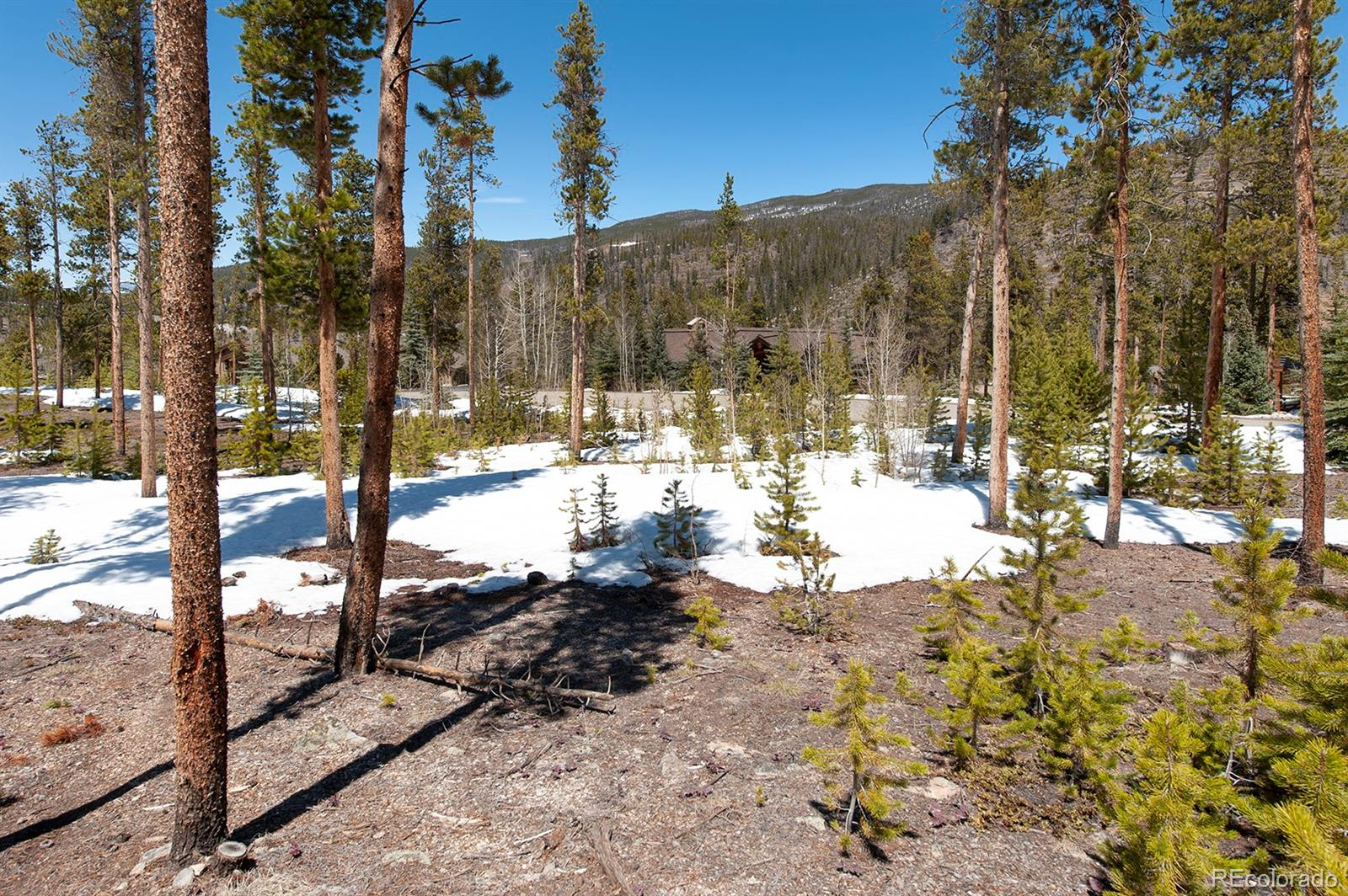 643 Highfield Trail Property Photo - Breckenridge, CO real estate listing