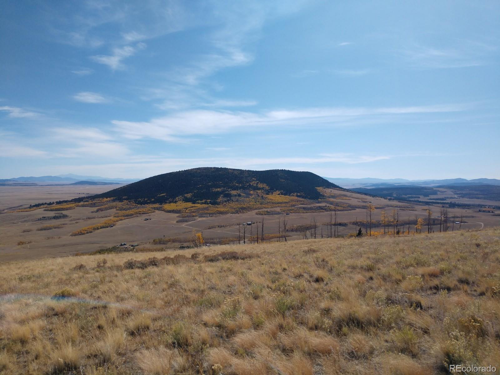 Black Mountain Ranch Road Property Photo - Fairplay, CO real estate listing
