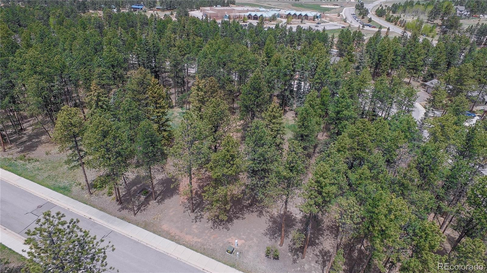 630 Meadowlark Lane Property Photo - Woodland Park, CO real estate listing