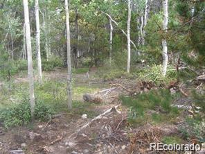 Maine Property Photo - Central City, CO real estate listing