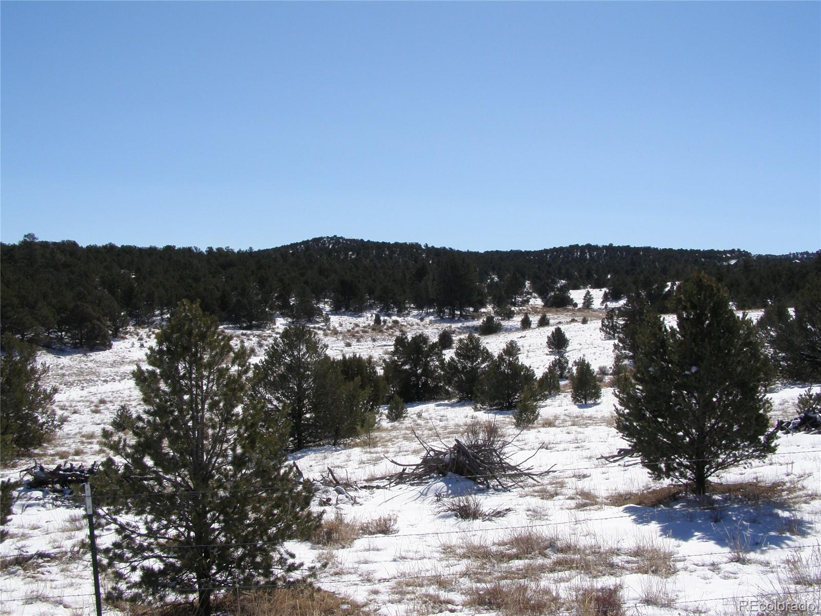 13 Cody Park Rd Property Photo - Cotopaxi, CO real estate listing