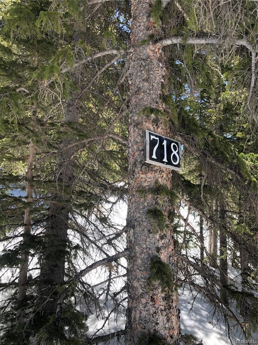 718 Mine Property Photo - Idaho Springs, CO real estate listing