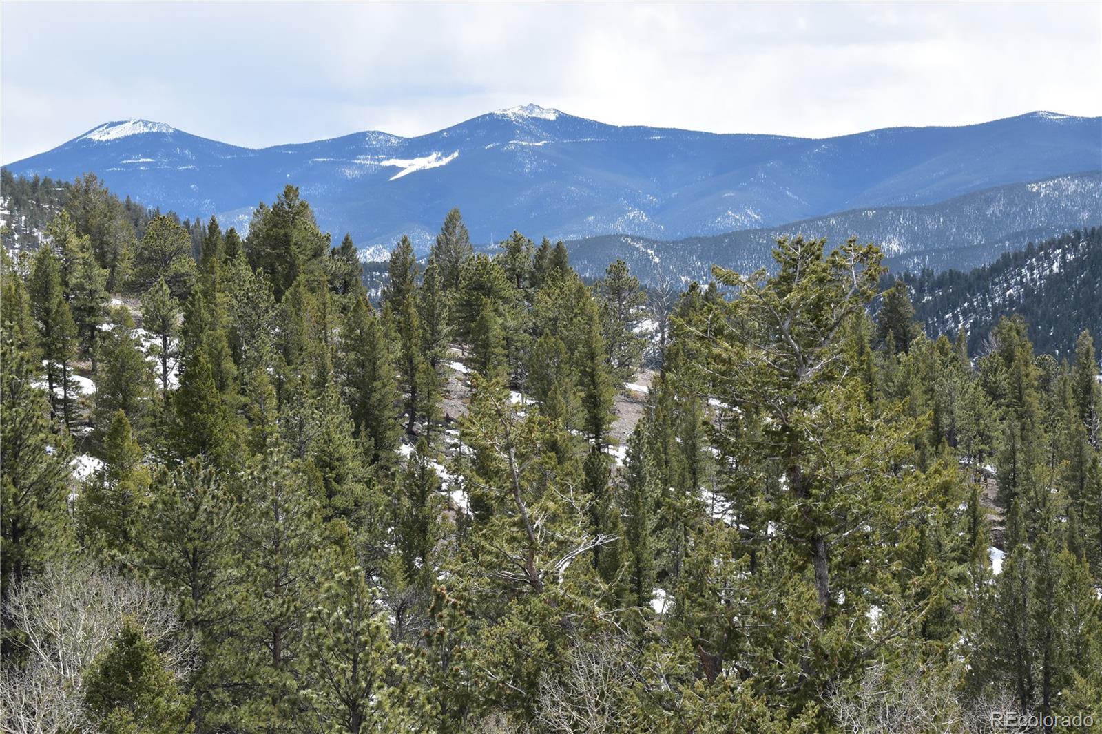 Hamlin Gulch Road Property Photo - Idaho Springs, CO real estate listing