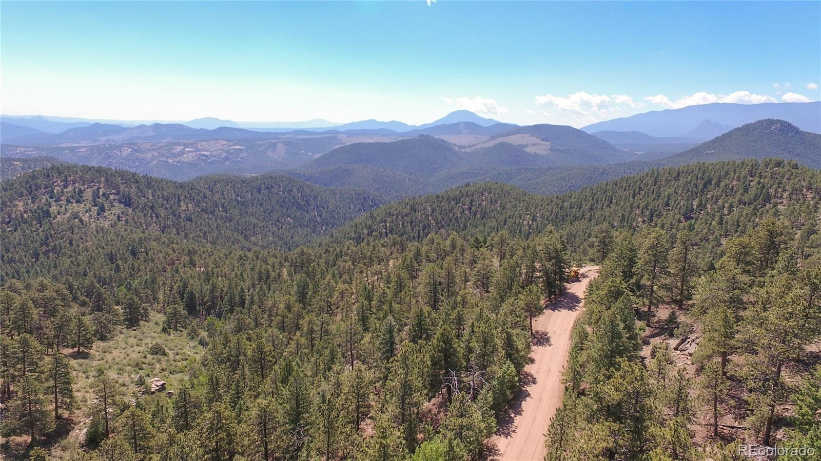 266 Ptarmigan Trail Property Photo - Bailey, CO real estate listing