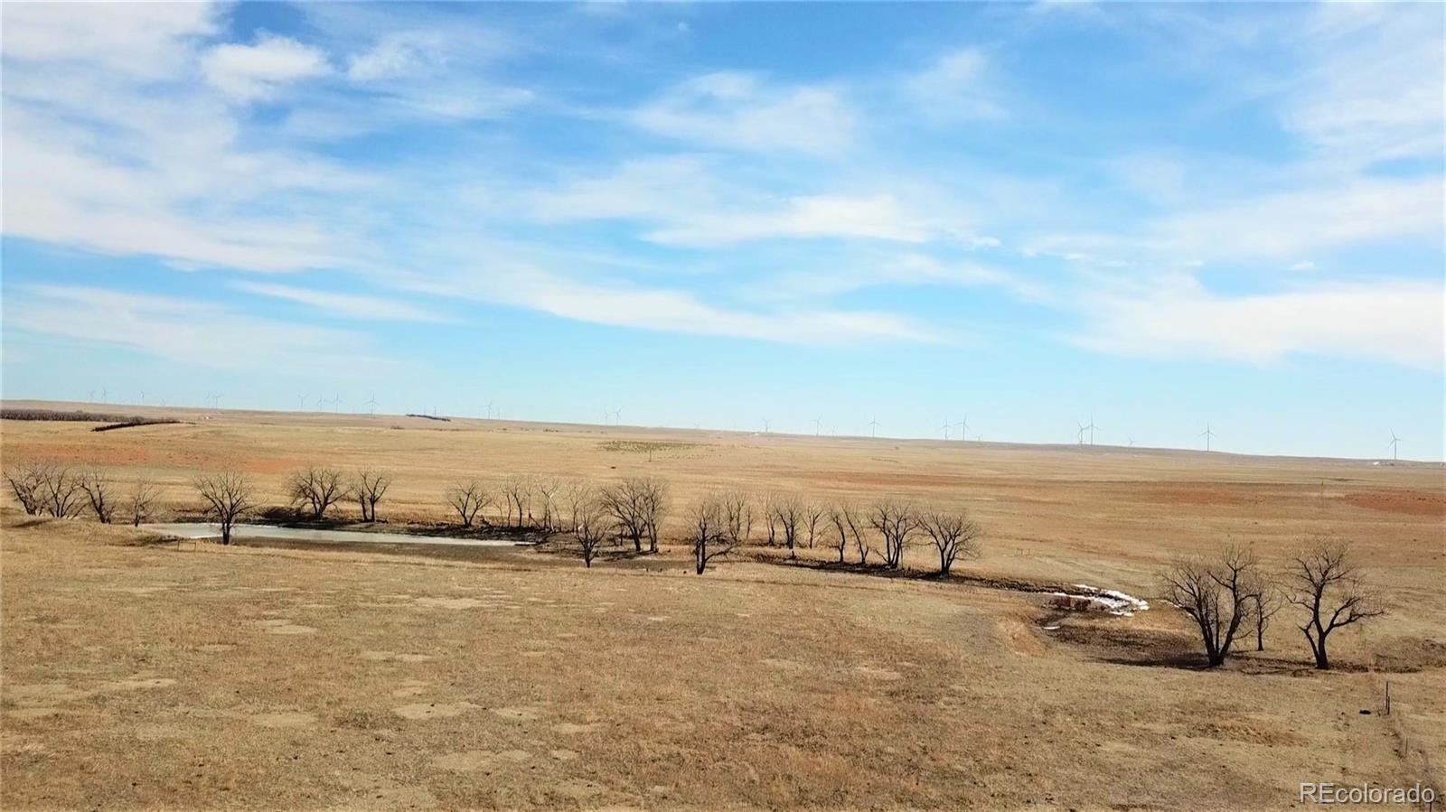 59 +/- Acres - Grassland Property Photo - Matheson, CO real estate listing