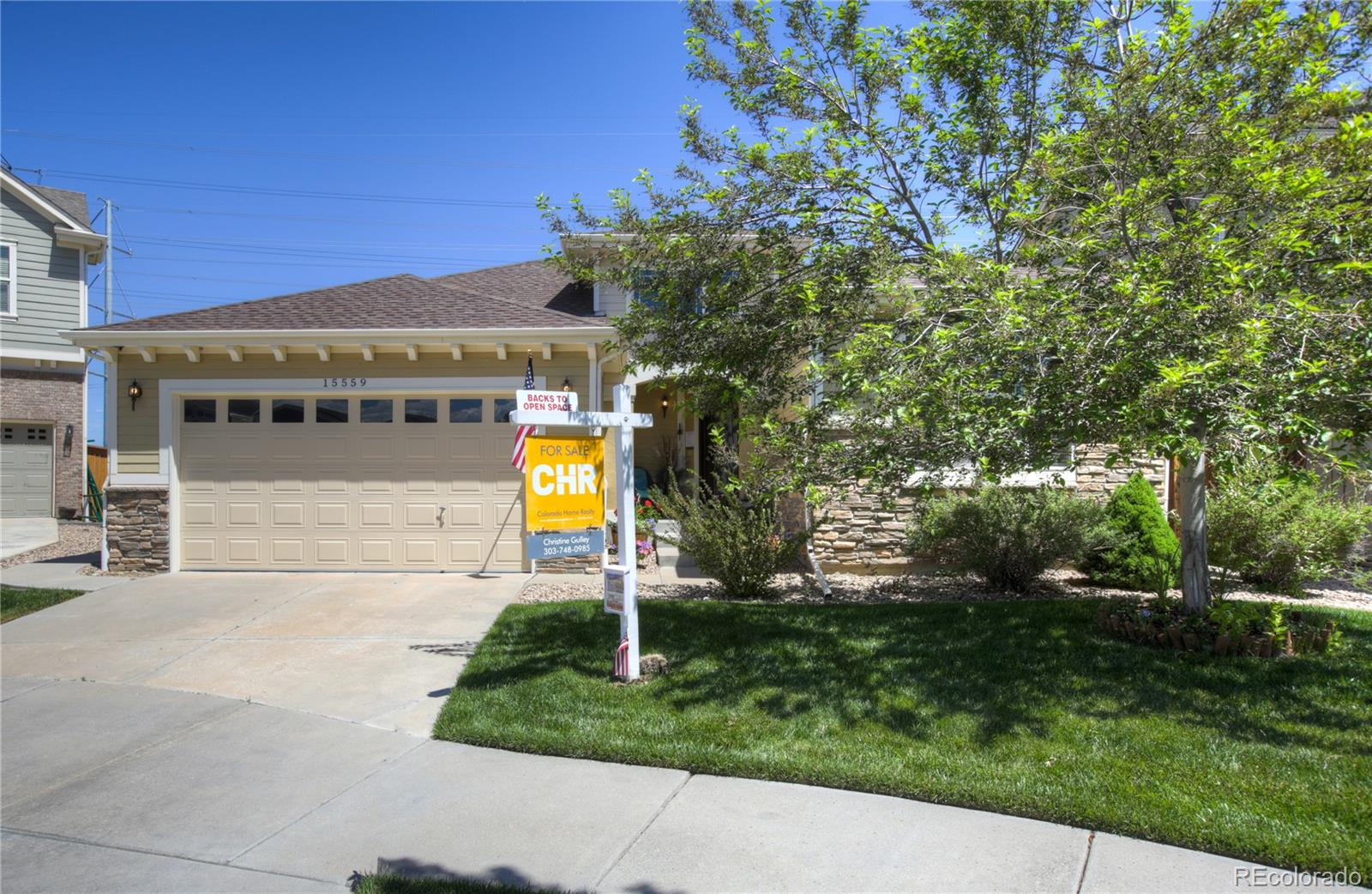 15559 E Pine Drop Avenue Property Photo - Parker, CO real estate listing