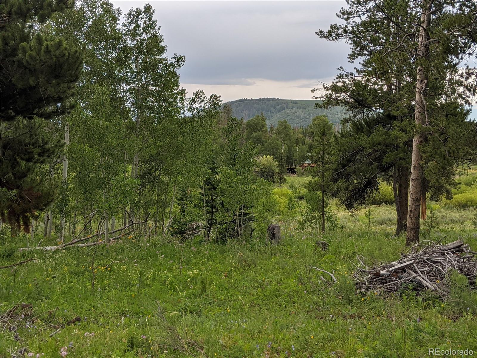 33120 Filly Trail Property Photo - Oak Creek, CO real estate listing