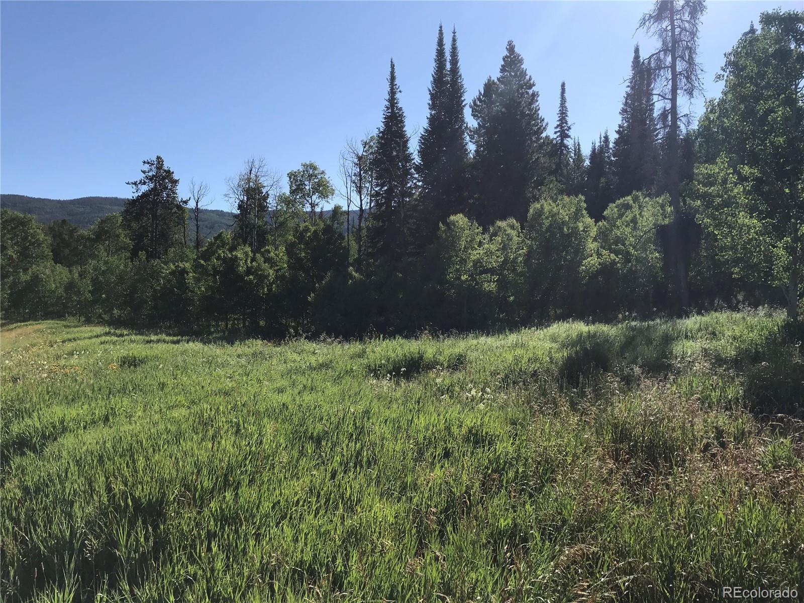 33181 Wenatchi Trail Property Photo - Oak Creek, CO real estate listing