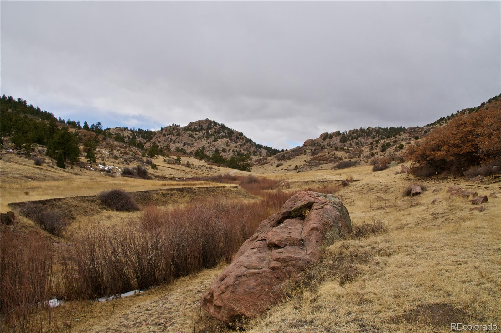 12094 County Road 11 Property Photo - Canon City, CO real estate listing