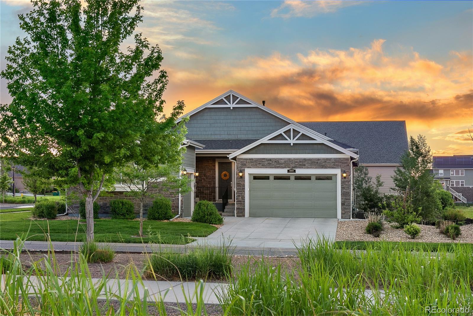 8169 S Blackstone Parkway Property Photo - Aurora, CO real estate listing