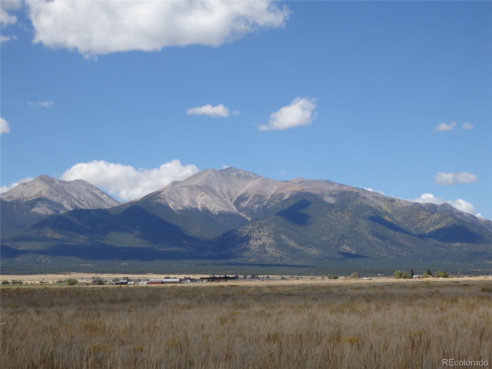 000 County Road 270 Property Photo - Nathrop, CO real estate listing