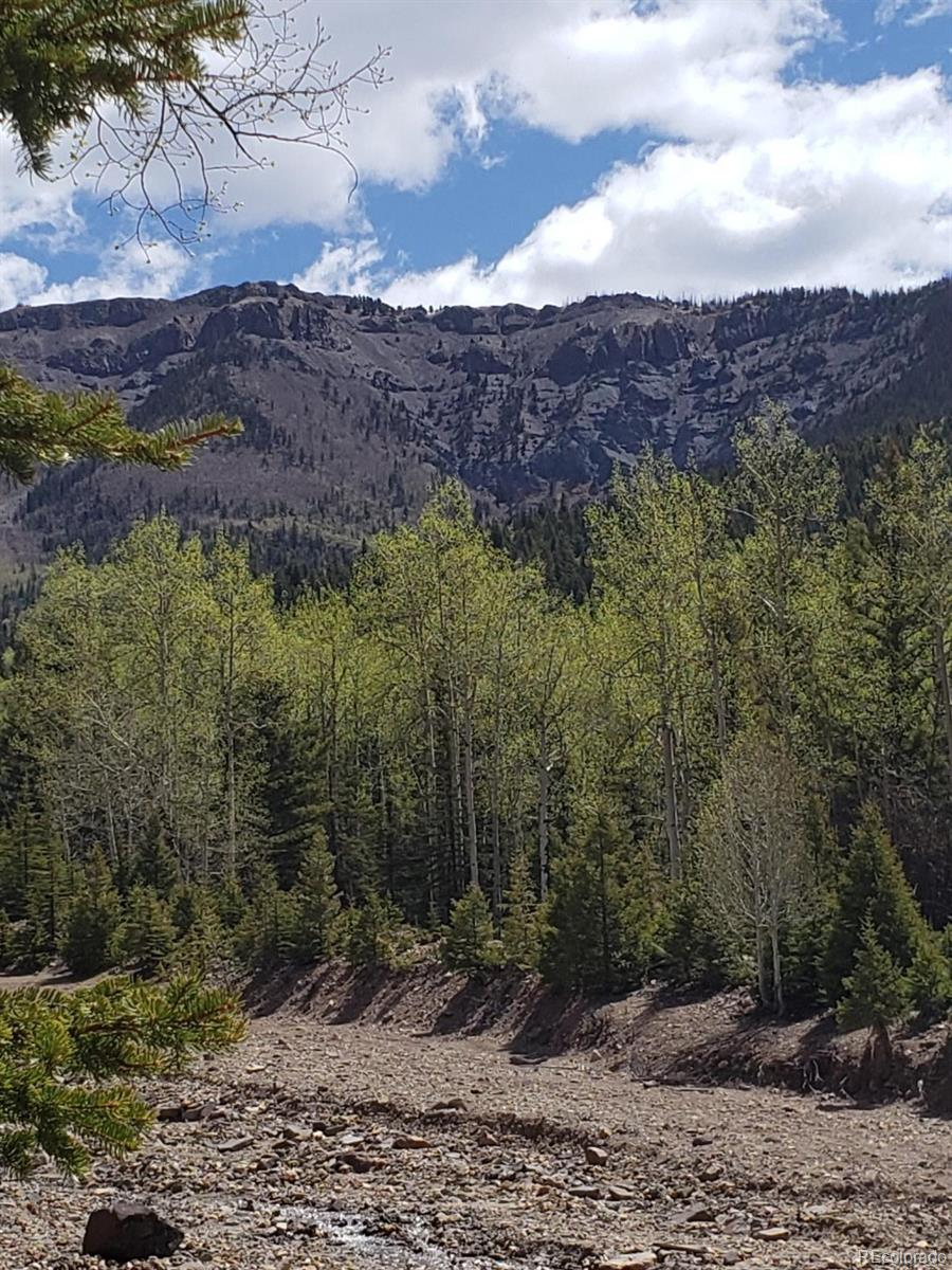 Vacant Land Property Photo - Jasper, CO real estate listing