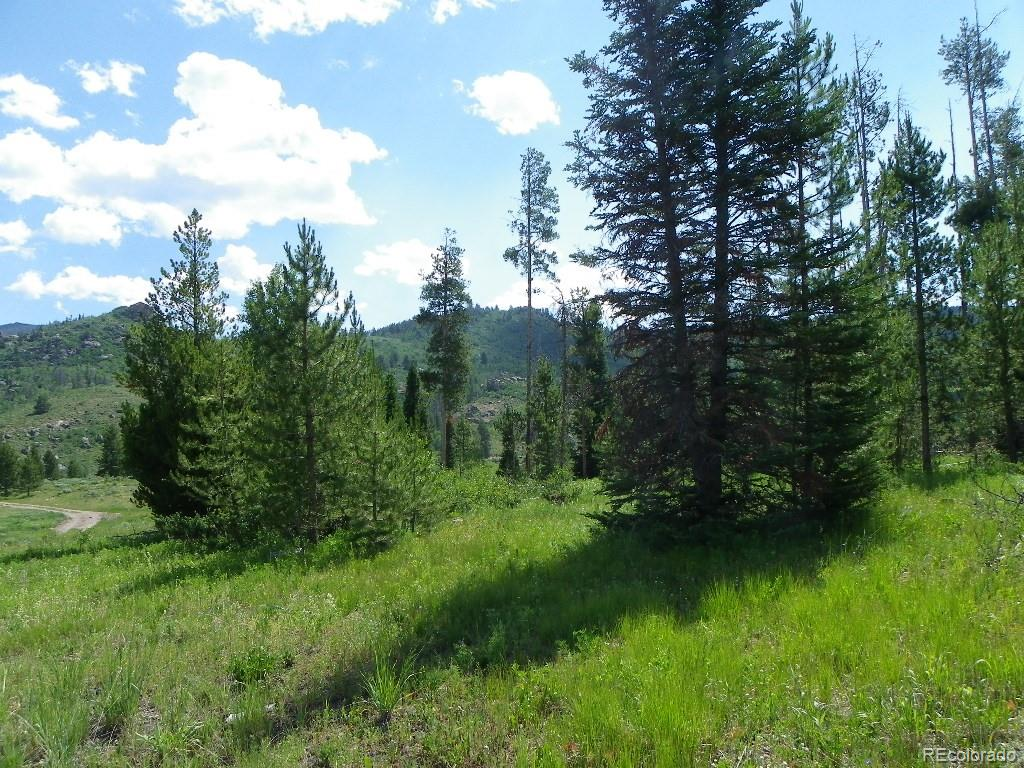 20780 Hame Trail Property Photo