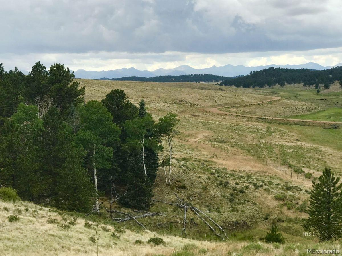 0000 Eagle Valley Rd. Property Photo - Westcliffe, CO real estate listing