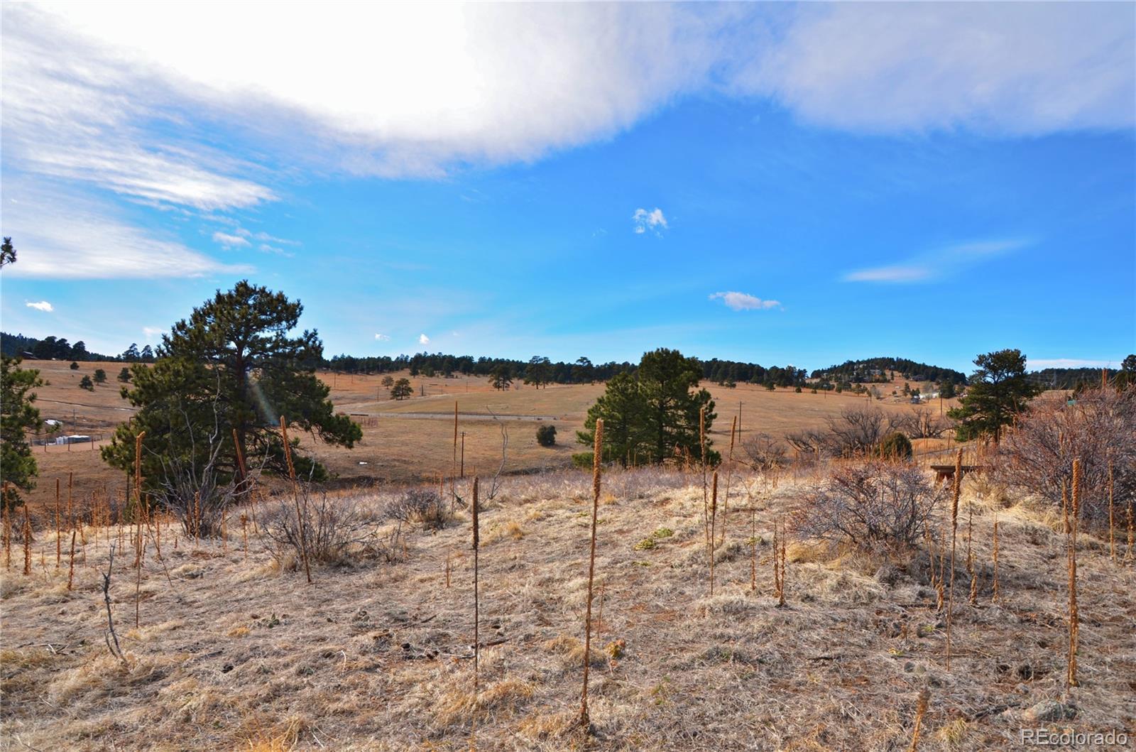 41 Mistletoe Road Property Photo - Golden, CO real estate listing