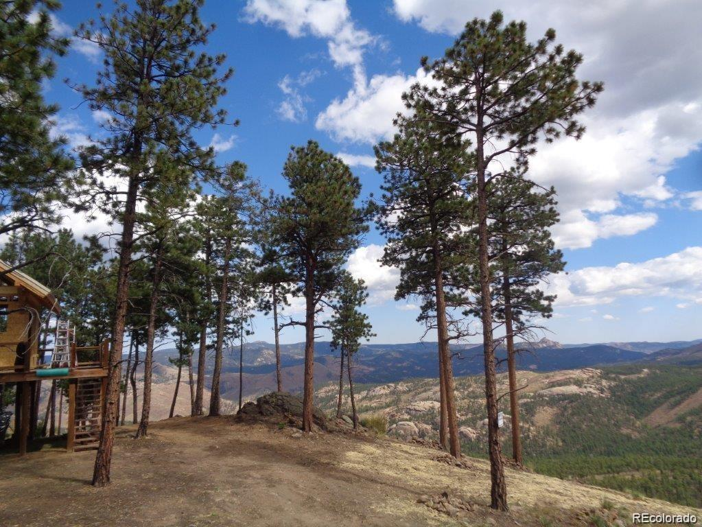 7 Holmes Gulch Property Photo - Bailey, CO real estate listing