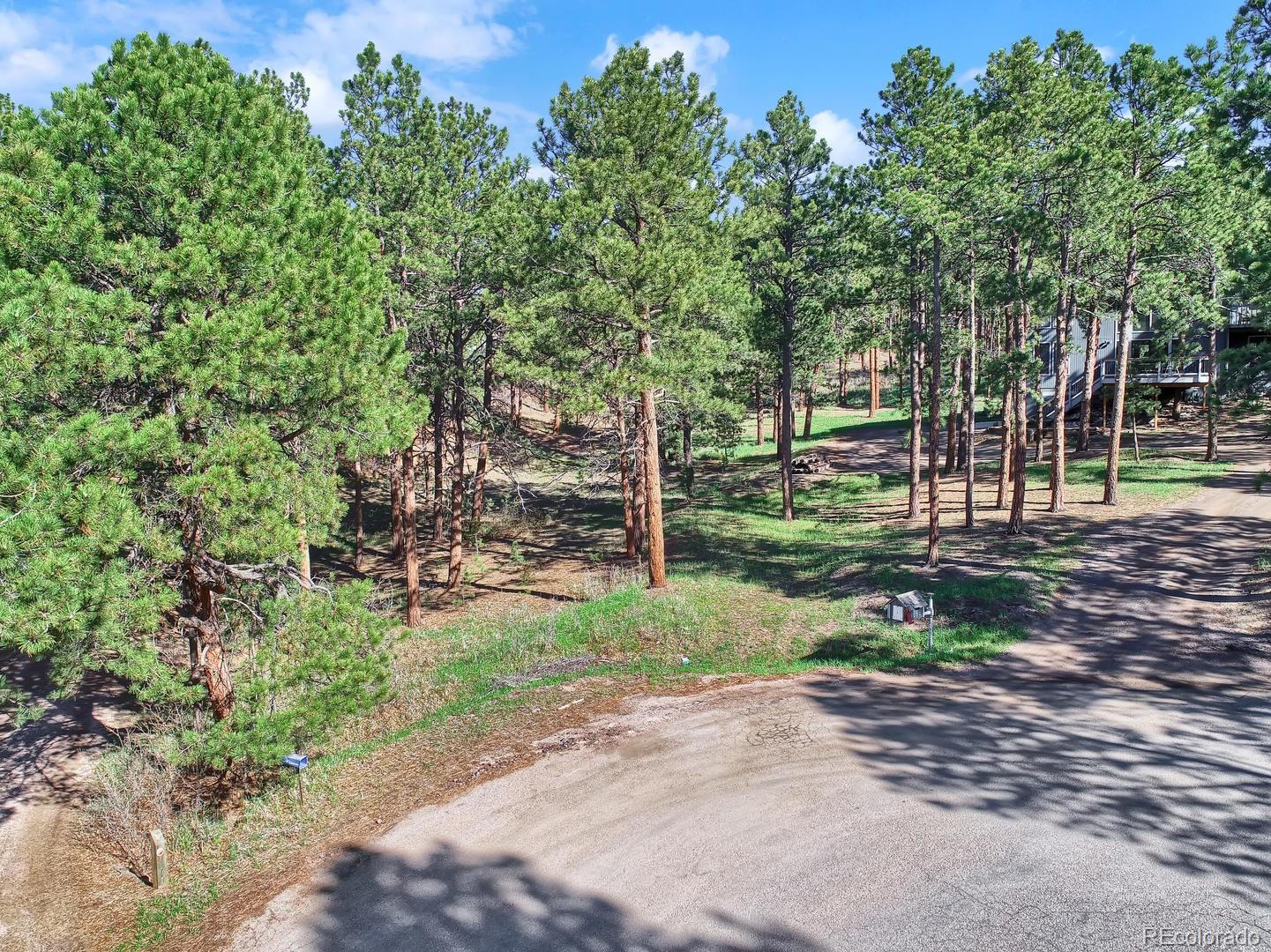 19020 Burnt Leaf Way Property Photo - Monument, CO real estate listing