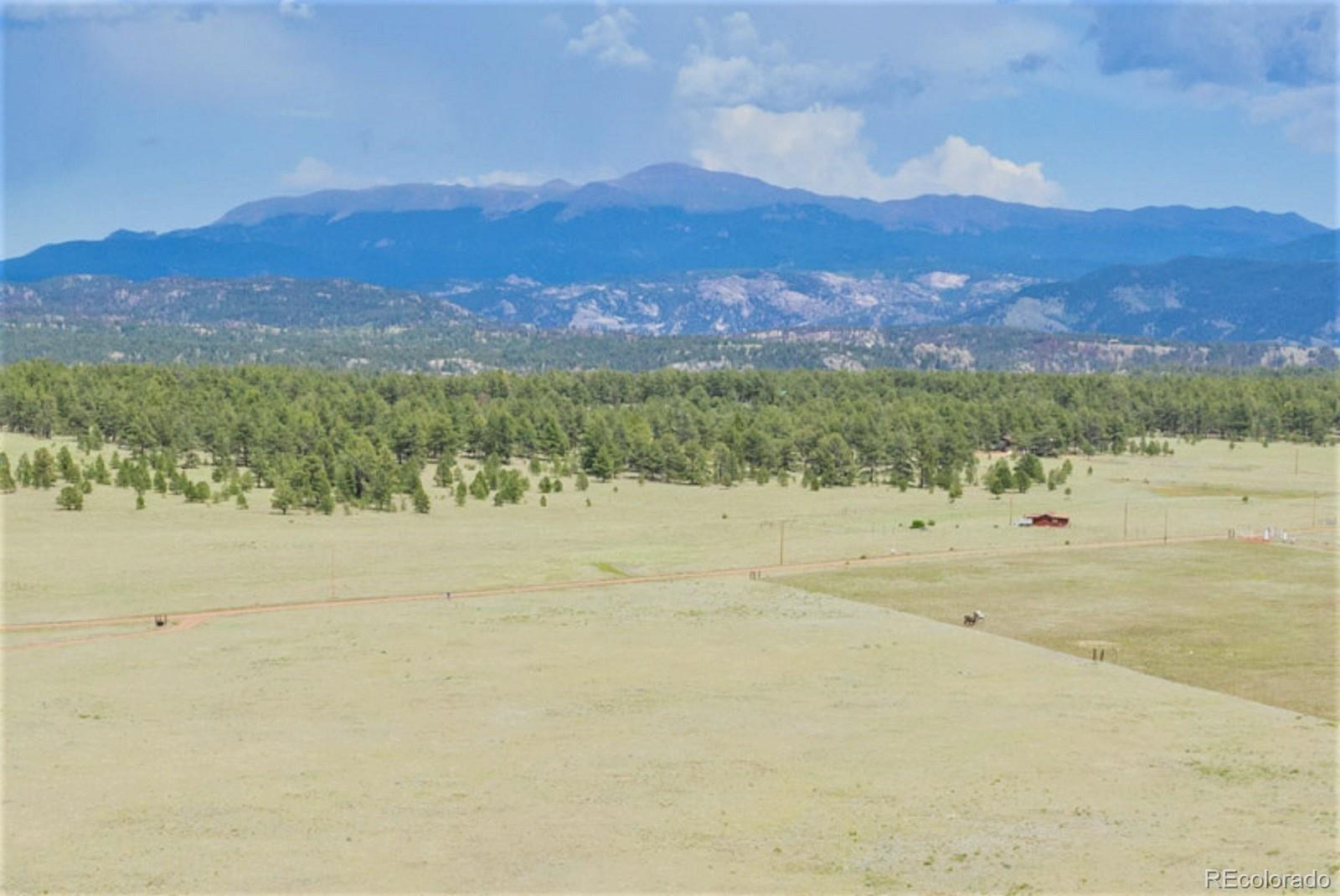 2225 Doe Valley Road Property Photo - Guffey, CO real estate listing