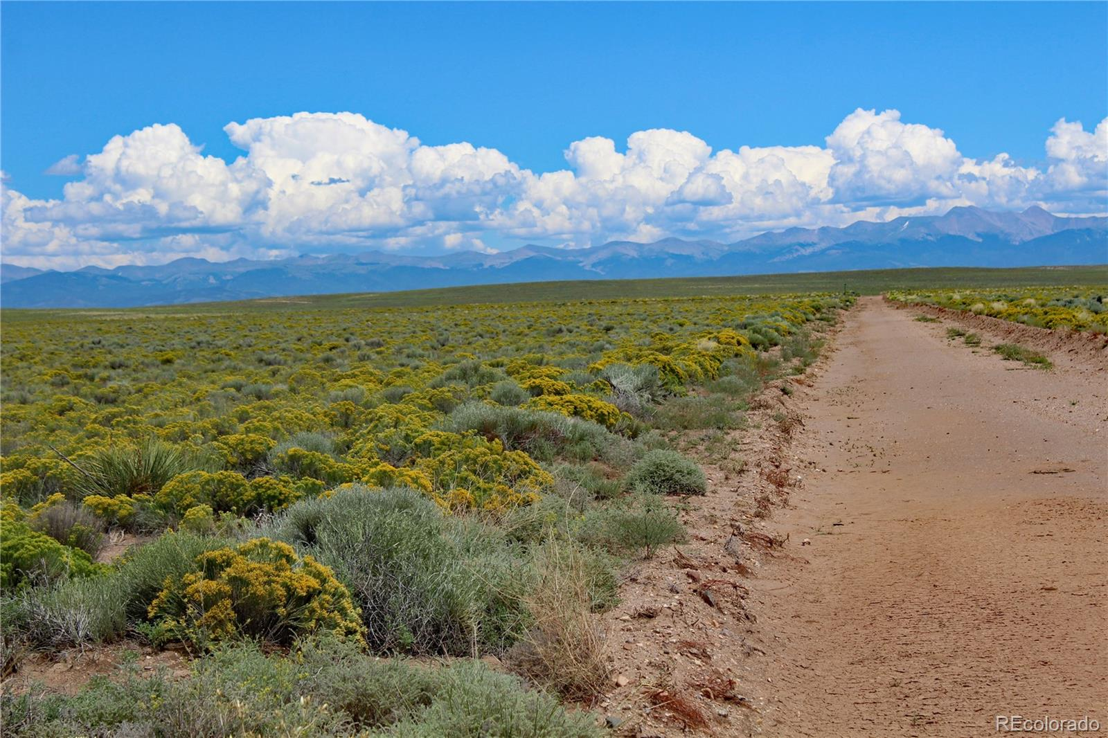Lot 26 Marcia Road Property Photo - Blanca, CO real estate listing