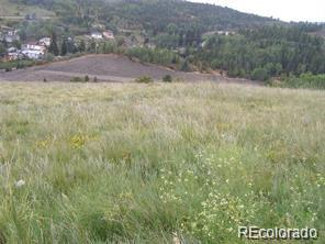 Stub Tail Property Photo - Central City, CO real estate listing